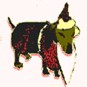 view snorillaka's profile