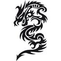 Draco Noctis