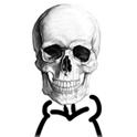 view eevee's profile