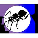 Citizen Ant