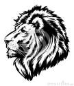 Cuddle Lion