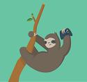 David the Sloth